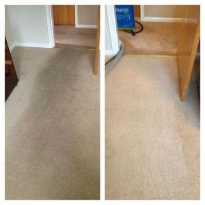carpet cleaned in barnsley