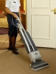 sebo vacuum cleaner