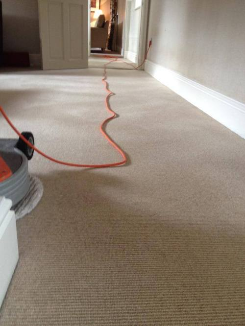 Wool carpet dry cleaned and ready for use in under a hour