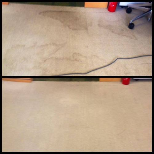 office  carpet cleaning Doncater