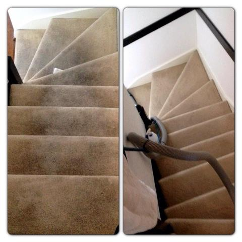 Rug Doctor Stairs Home Decor